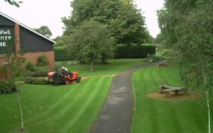 Willowbrook Gardens